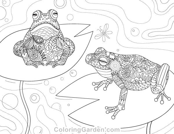 Frog Adult Coloring Page
