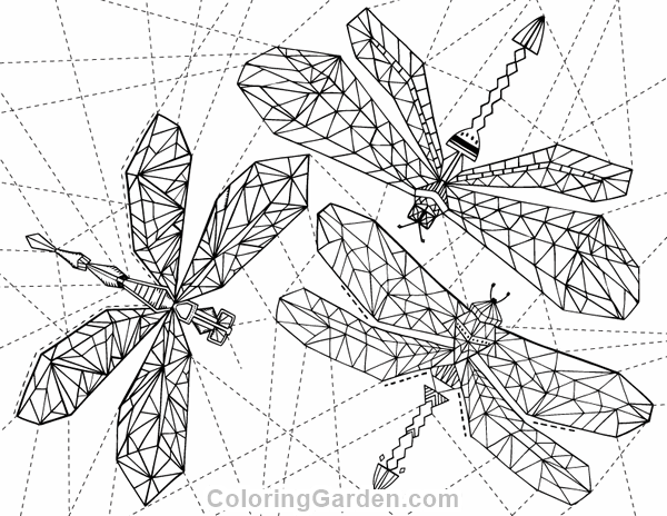Geometric Dragonfly Adult Coloring Page