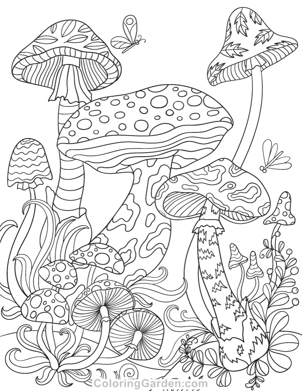 Mushrooms Adult Coloring Page