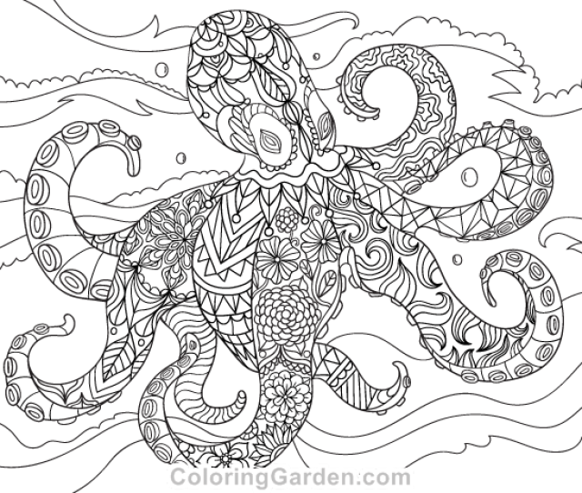 Octopus Adult Coloring Page