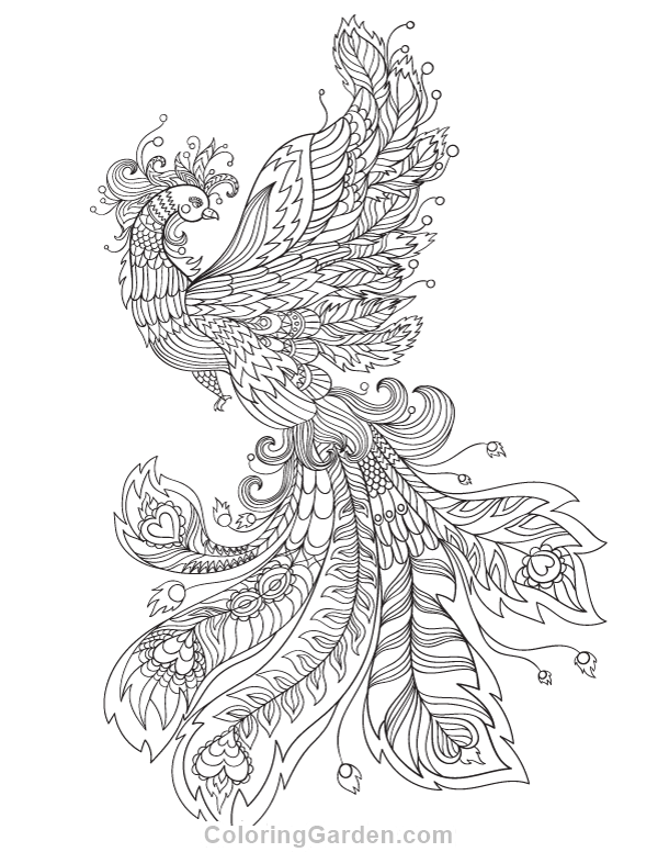 Phoenix Adult Coloring Page
