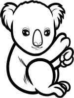 Ausmalbilder Koala   Malvorlagen Kostenlos zum Ausdrucken