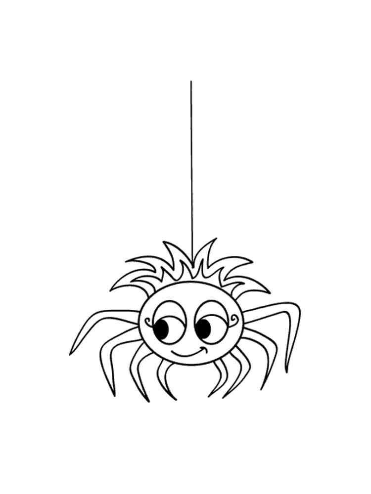 Malvorlage Spinne Kostenlos