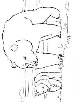 Ausmalbilder Bären - Malvorlagen Kostenlos zum Ausdrucken
