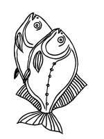 Malvorlagen Piranha   Ausmalbilder Kostenlos zum Ausdrucken