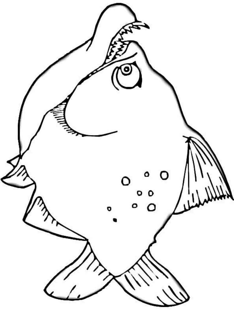 Malvorlagen Piranha - Ausmalbilder Kostenlos zum Ausdrucken