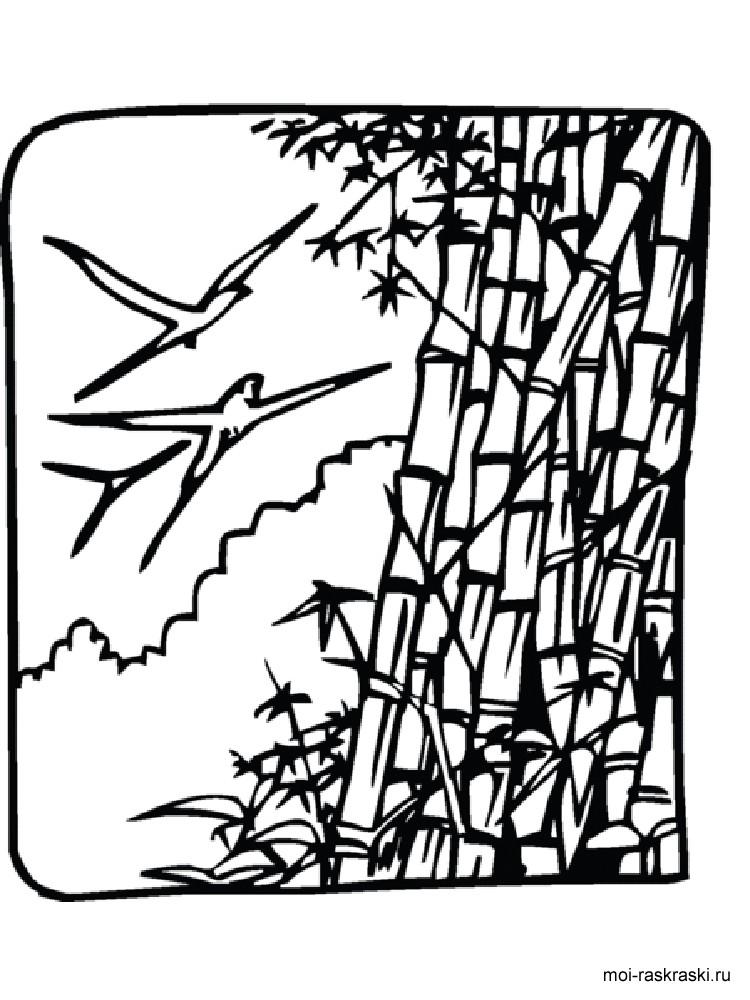 Malvorlage Bambus