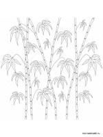 Malvorlagen Bambus   Ausmalbilder Kostenlos zum Ausdrucken