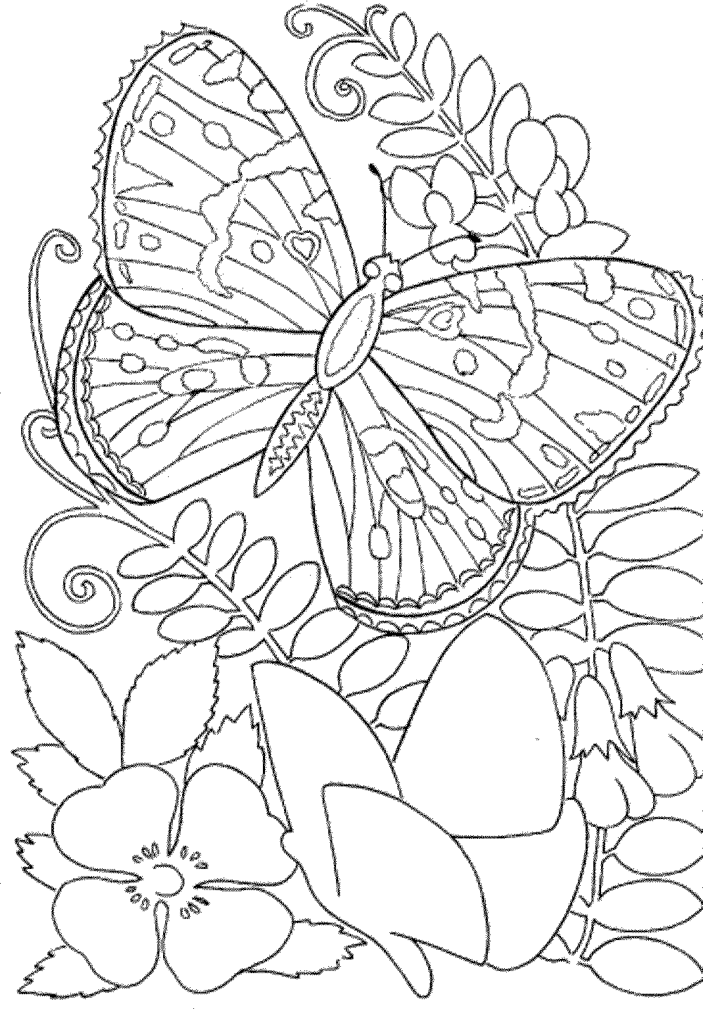 Free Printable Spring Coloring Pages For Adults - Coloring ... | coloring pages for adults online printable