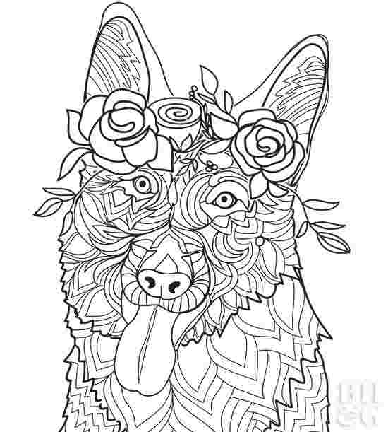 German Shepherd Dog Coloring Pages Coloring Pages Coloring