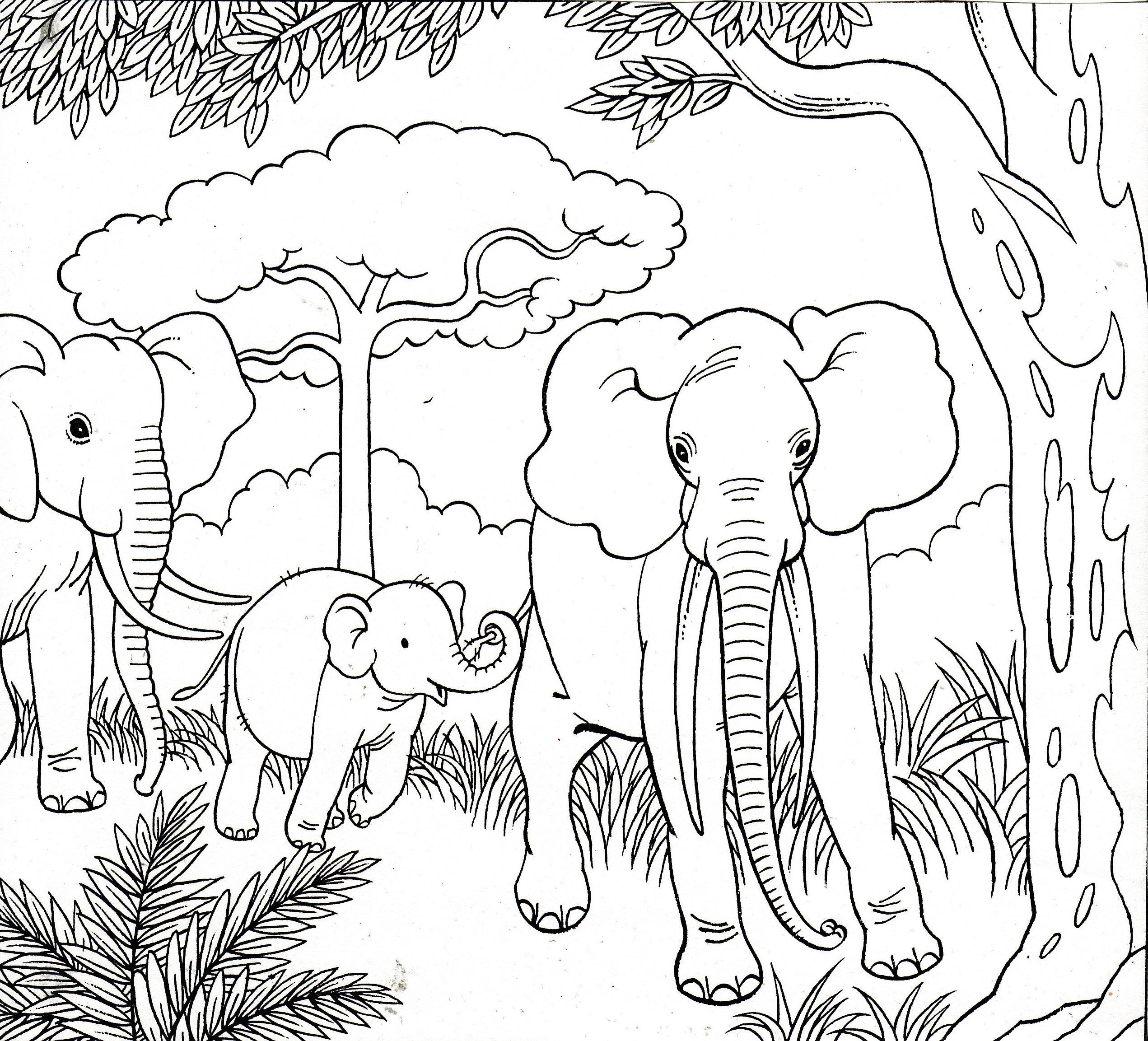 Elephant Stencil Coloring Pages