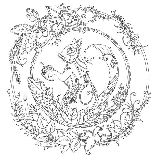 Secret Garden Coloring Book Free Johanna Basford Amazon Enchanted