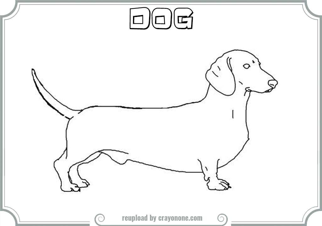 Dachshund Pages Realistic Coloring Pages