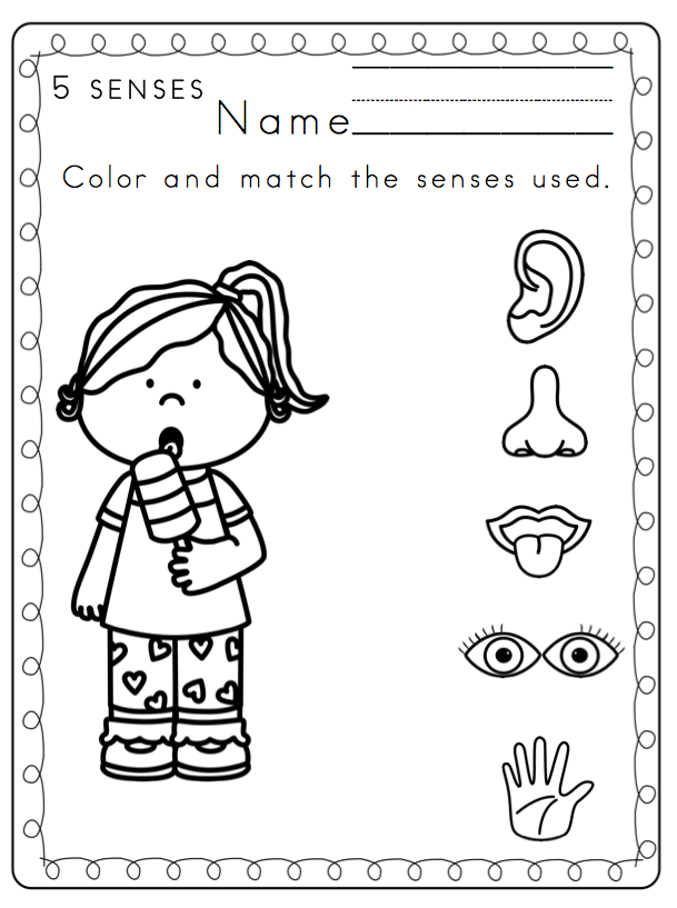Preschool Printables: Toddler 5 Senses Printable Coloring