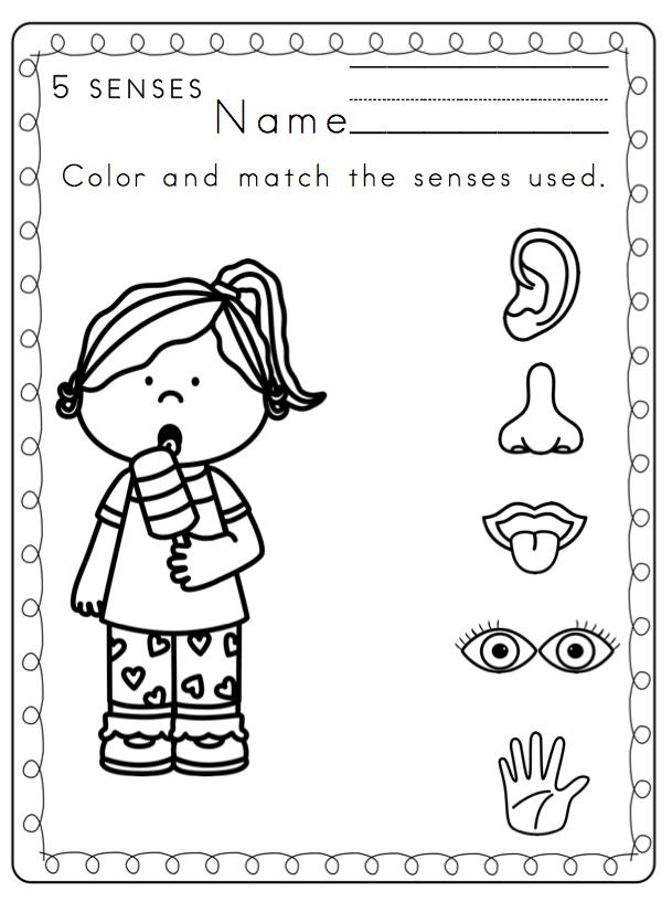 Preschool Printables Toddler 5 Senses Printable Coloring Page
