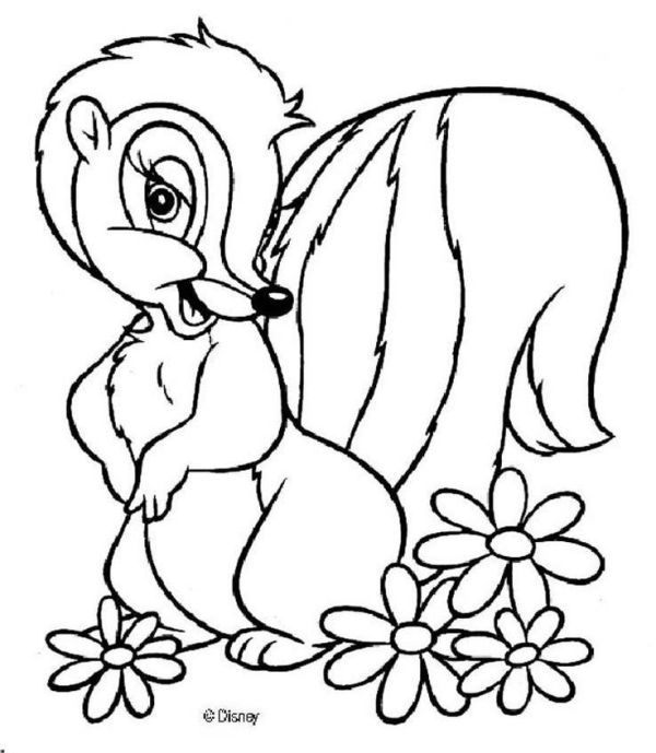 skunk coloring pages # 3