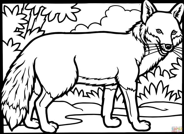 Red Fox Coloring Page  Free Printable Coloring Pages - Coloring Home