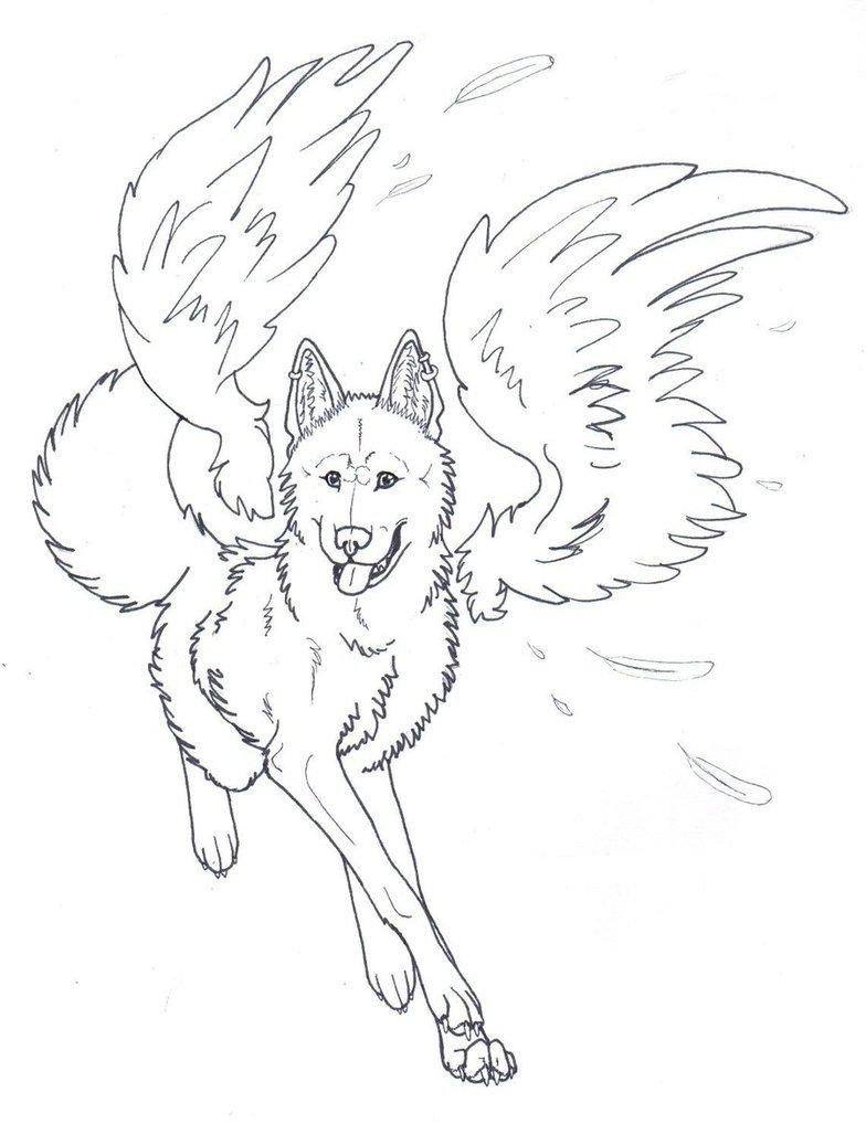 wolves  wings coloring pages  coloring home