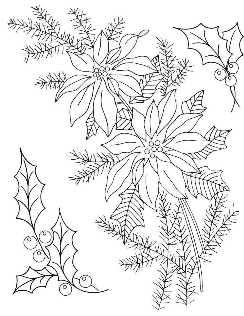 printable poinsettia patterns  coloring home