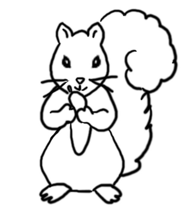 Coloring Pages Flying Squirrel Coloring Pages Squirrel Squirrel