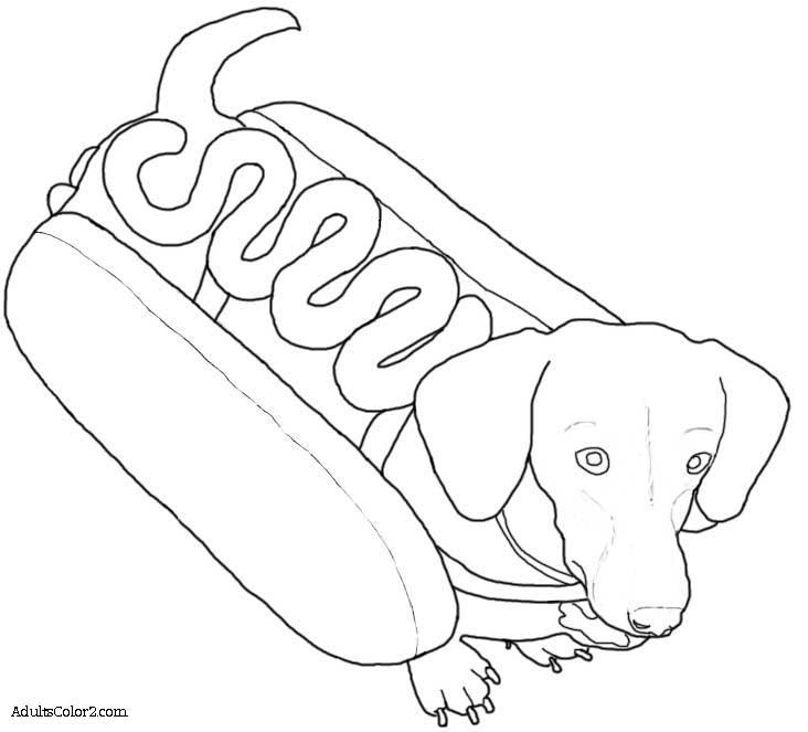 printable coloring pages of dachsunds  coloring home