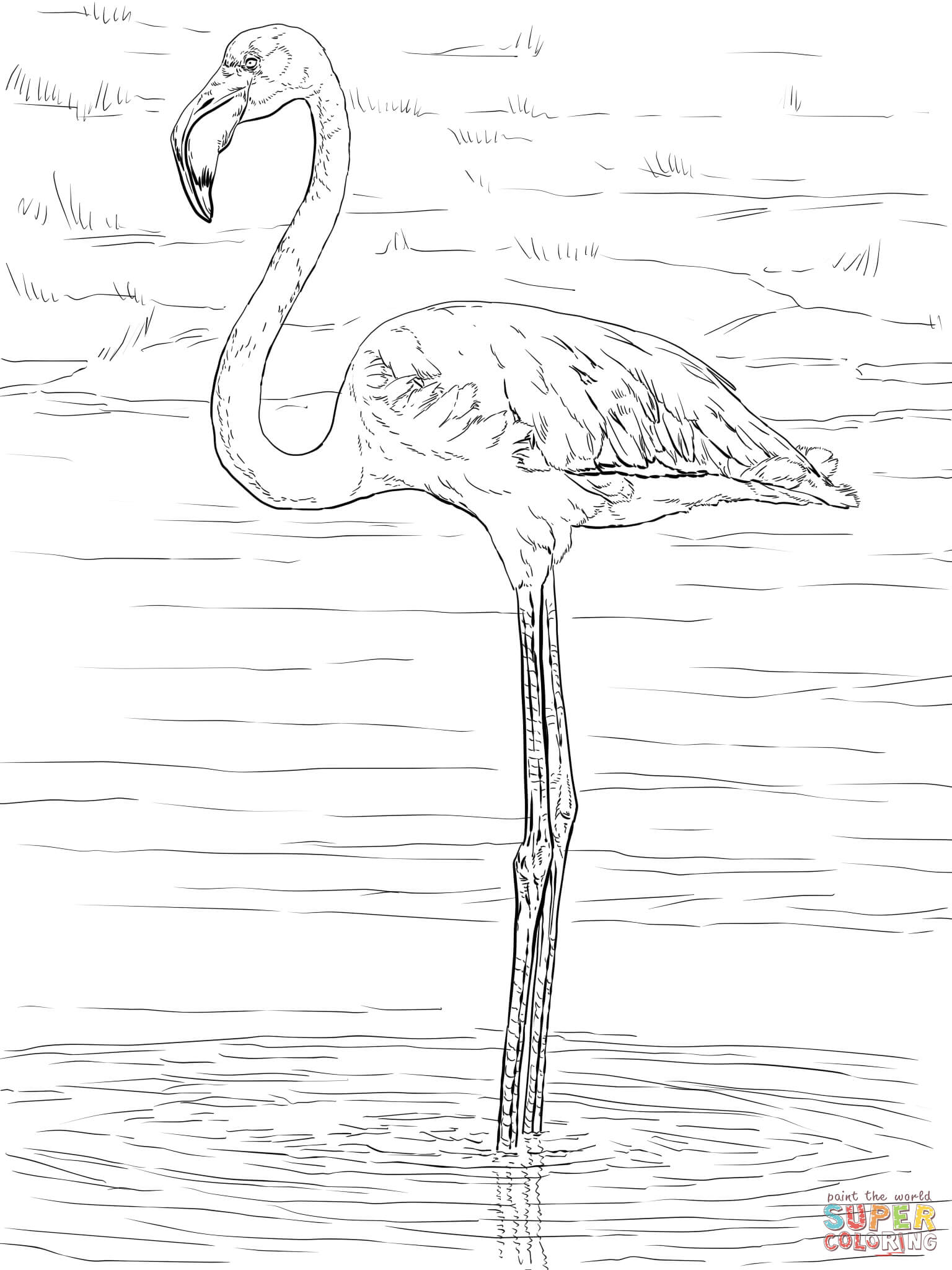 Birthday Flamingo Coloring Pages - Coloring Home