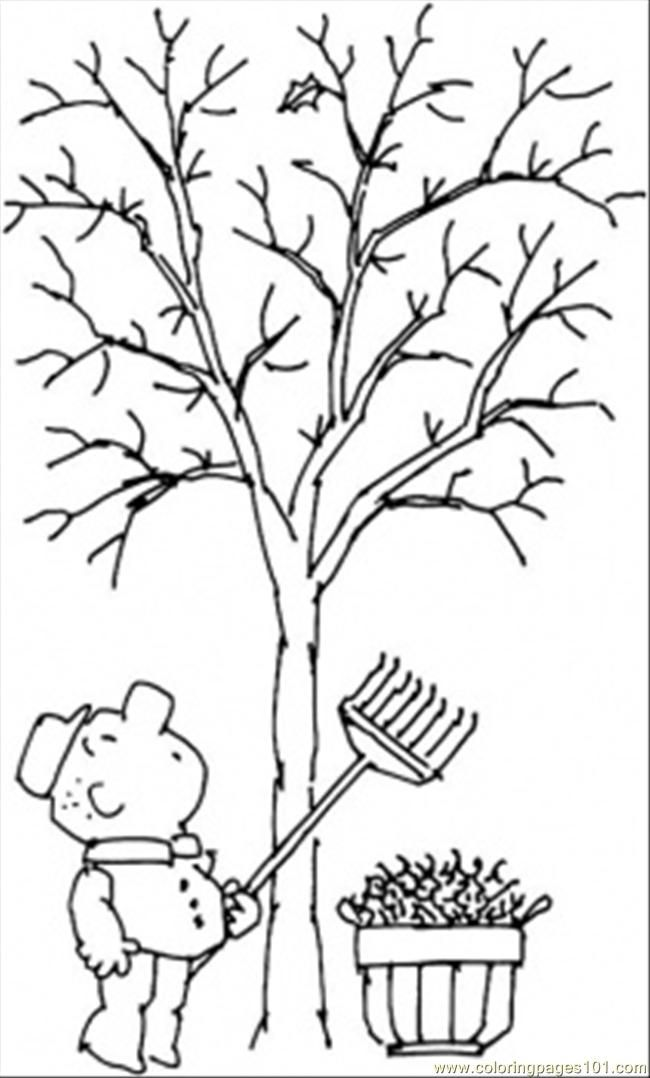 bare fall tree coloring page  coloring home