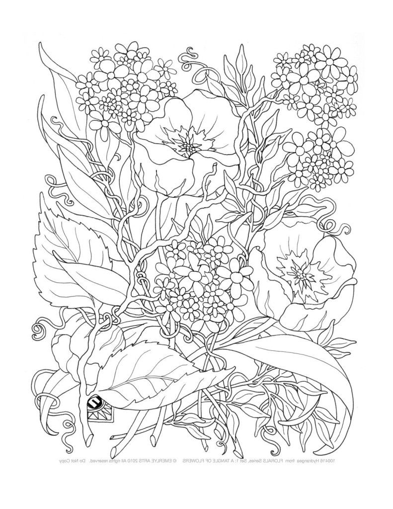 Adult Only Coloring Pages - Coloring Home | free printable coloring pages for adults only flowers