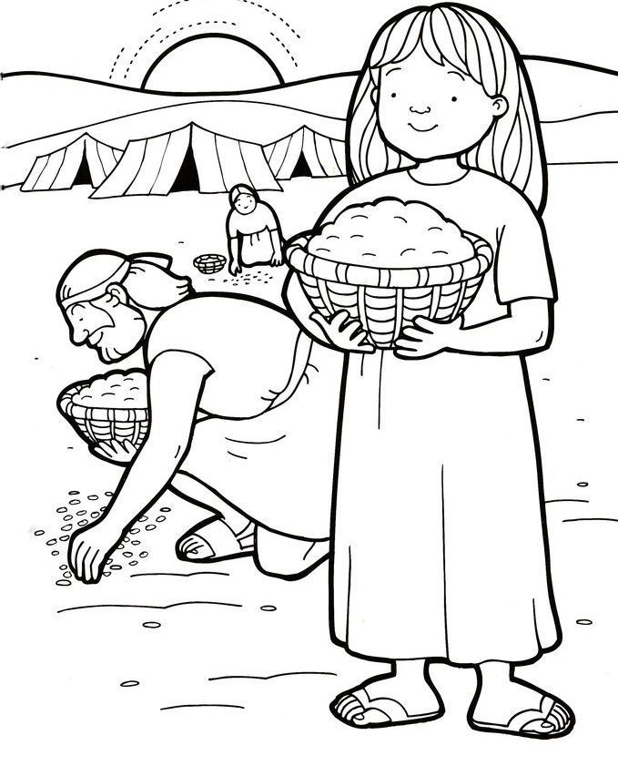 Coloring Pages For Children Manna, Quail And Water