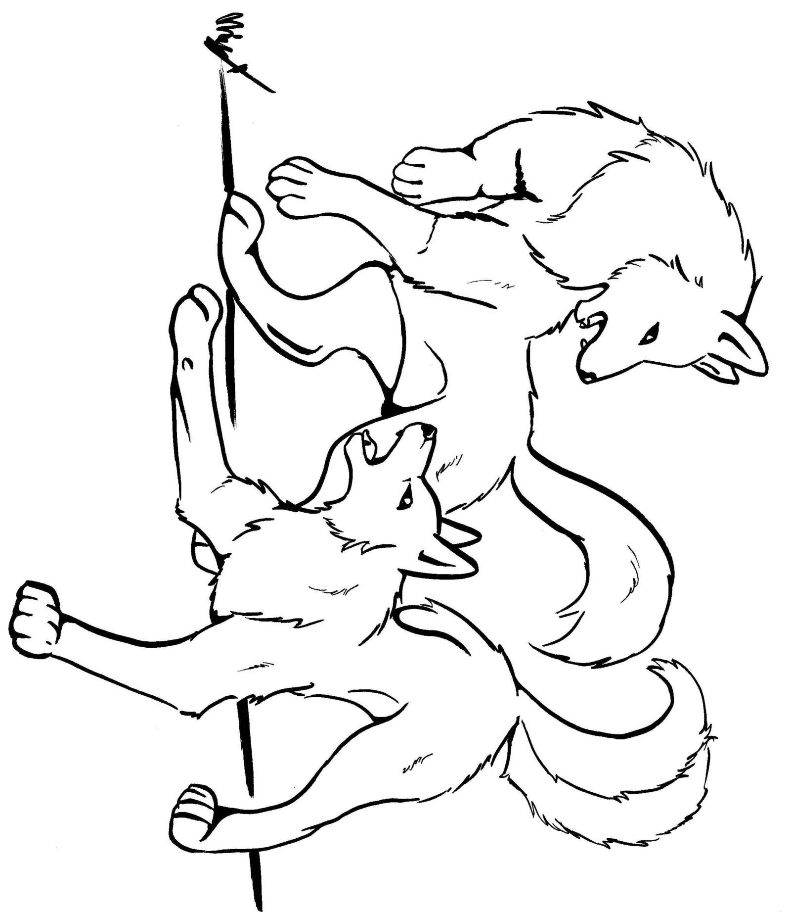 Coloring Pages Of Wolves