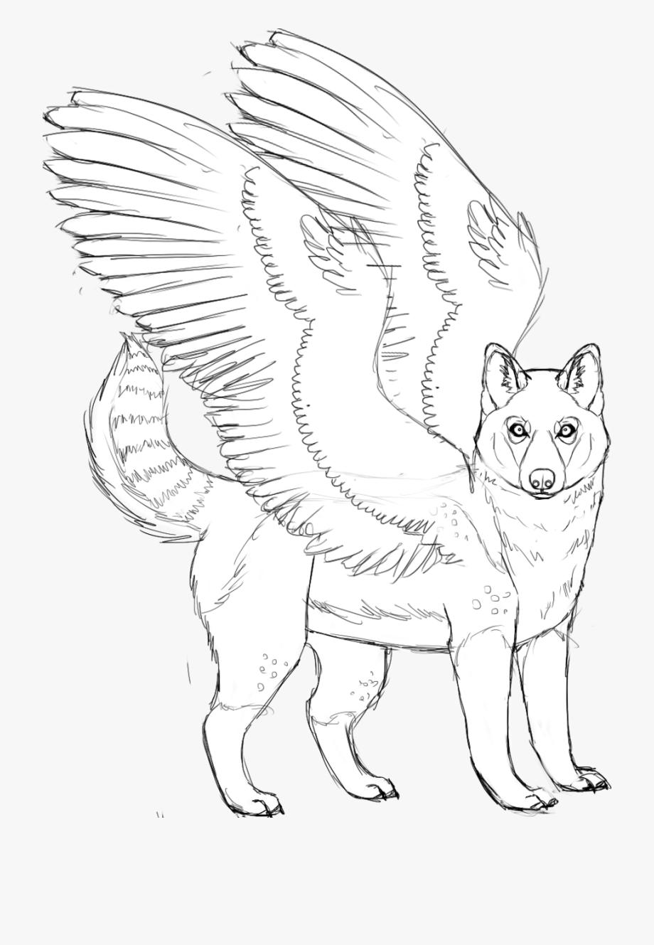 Husky Coloring Page : husky, coloring, Husky, Coloring, Pages, Pictures, Transparent