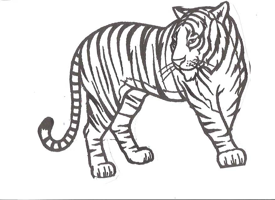 Wild Animal Coloring Pages For Kids