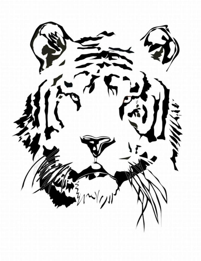 Snow Leopard Coloring Pages To Print Coloring Pages