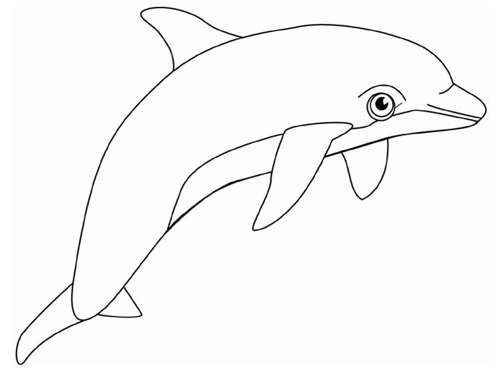 Dolphin Coloring Pages 11 Coloring Kids