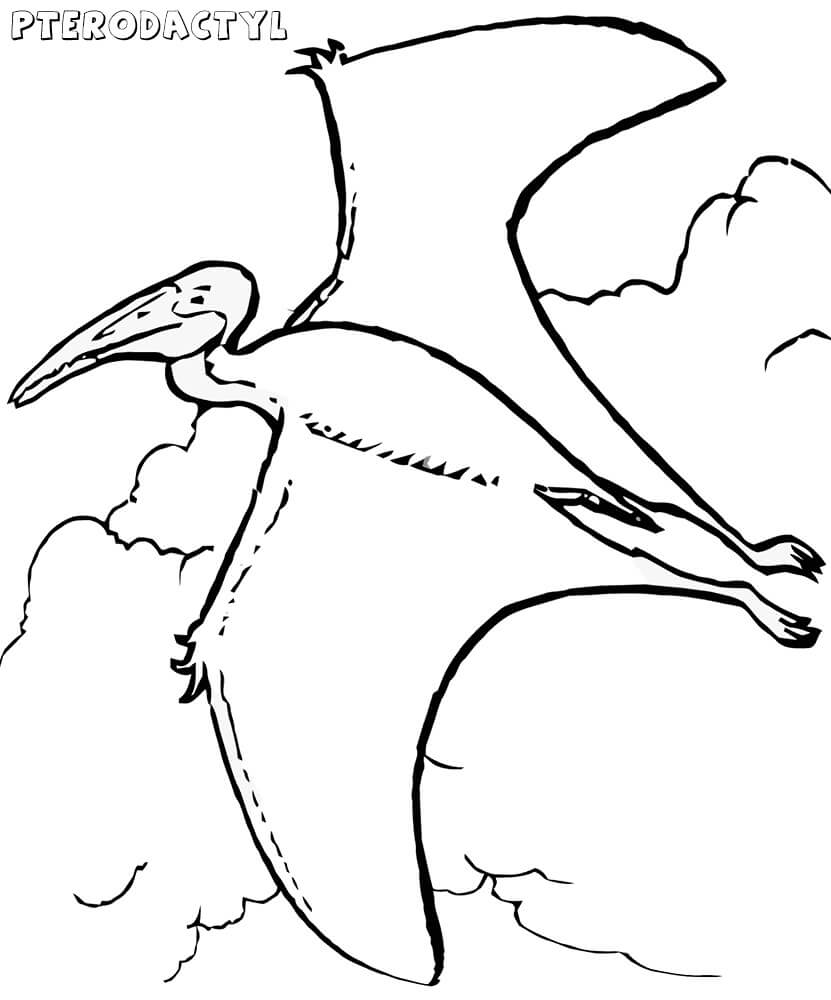 Pterodactyl Coloring Page : pterodactyl, coloring, Flying, Pterodactyl, Coloring, Printable, Pages
