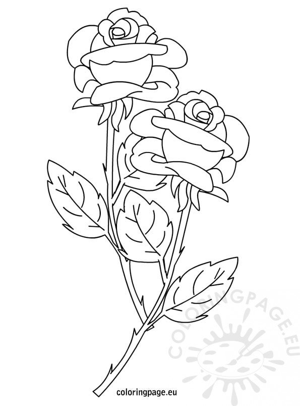 Roses coloring page