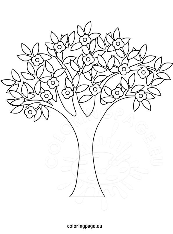 Spring Tree coloring