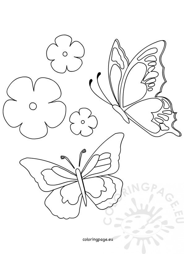 Spring – Butterfly And Flower