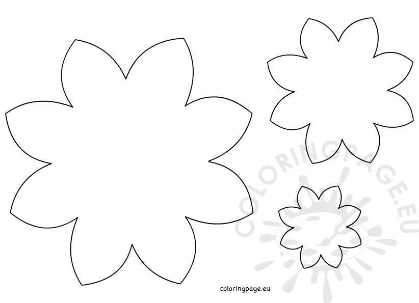 Flower Daisy 8 petal