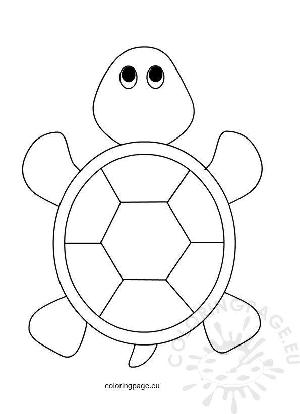 Sea Turtle for kids