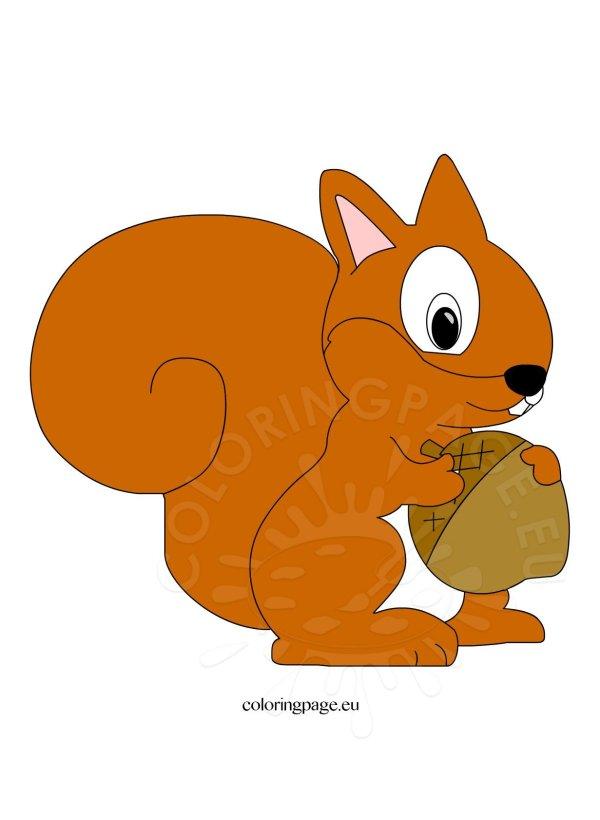cute squirrel clipart coloring
