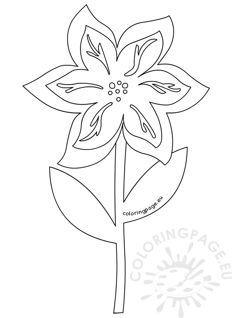6 Petal Flower with leaves