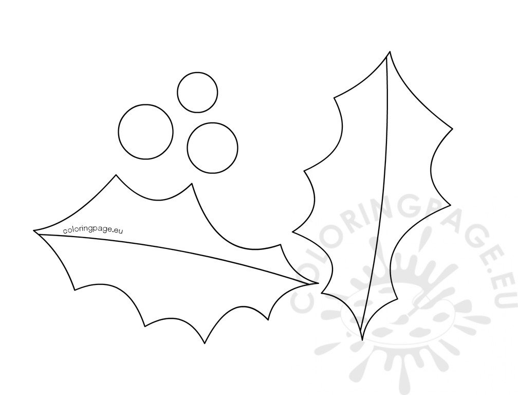 Holly leaf berry outline template