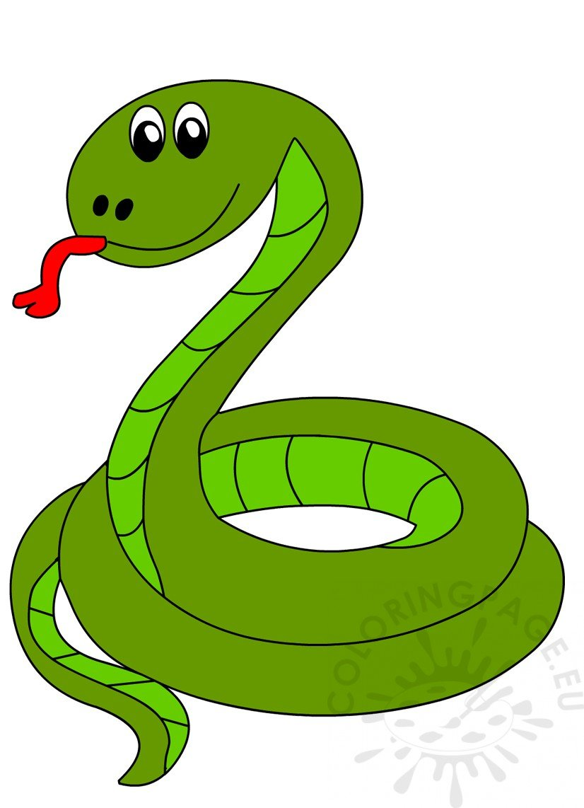 Green Snake Vector Illustration Coloring Page