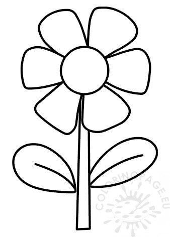 Flower with 6 petals