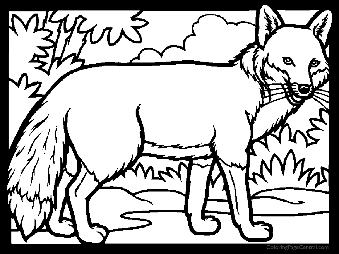 Fox 01 Coloring Page Coloring Page Central