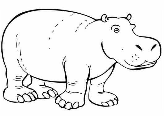 hippopotamus for christmas coloring page