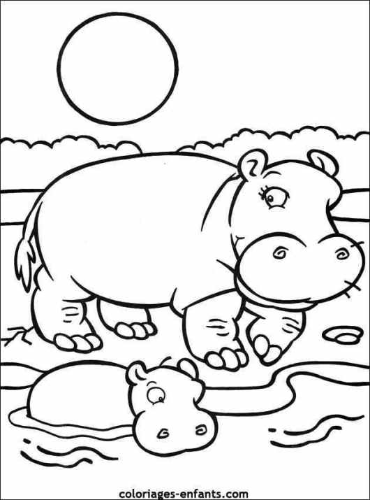 Hippopotamus Coloring Page for