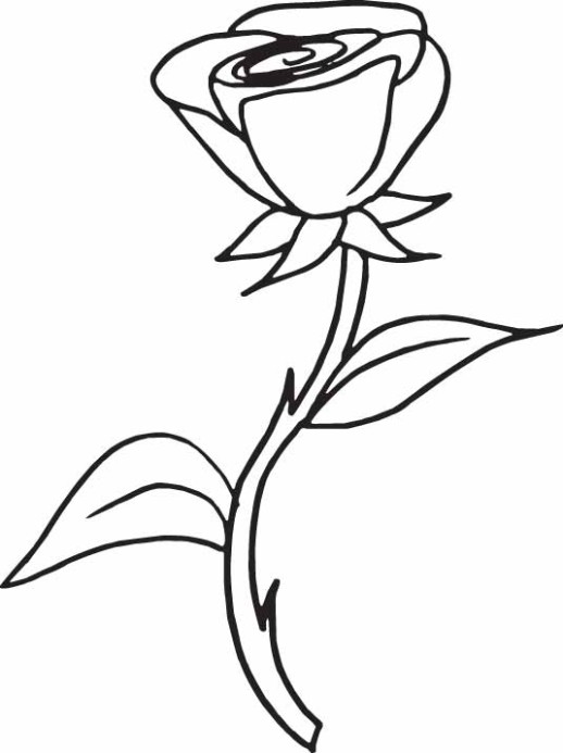 a-sprig-of-rose-coloring-pages-for-girls