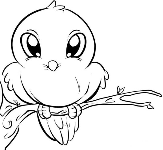 cute-birds-coloring-pages